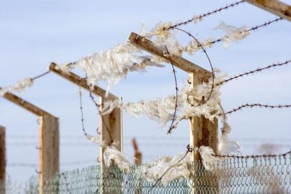 Pollution et déchets plastiques